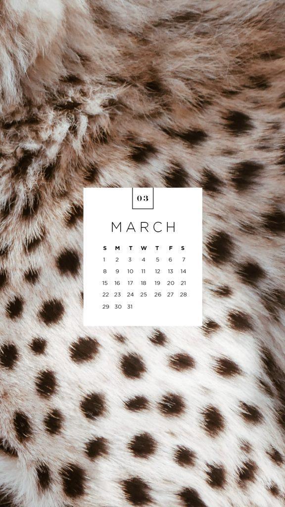 social_post_calendar