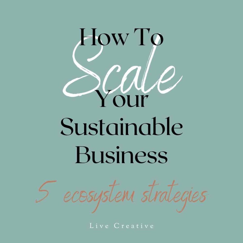 hot-to-scale-your-sustainable-business