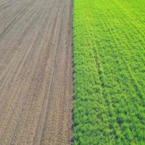 regenerative-agriculture-comparison