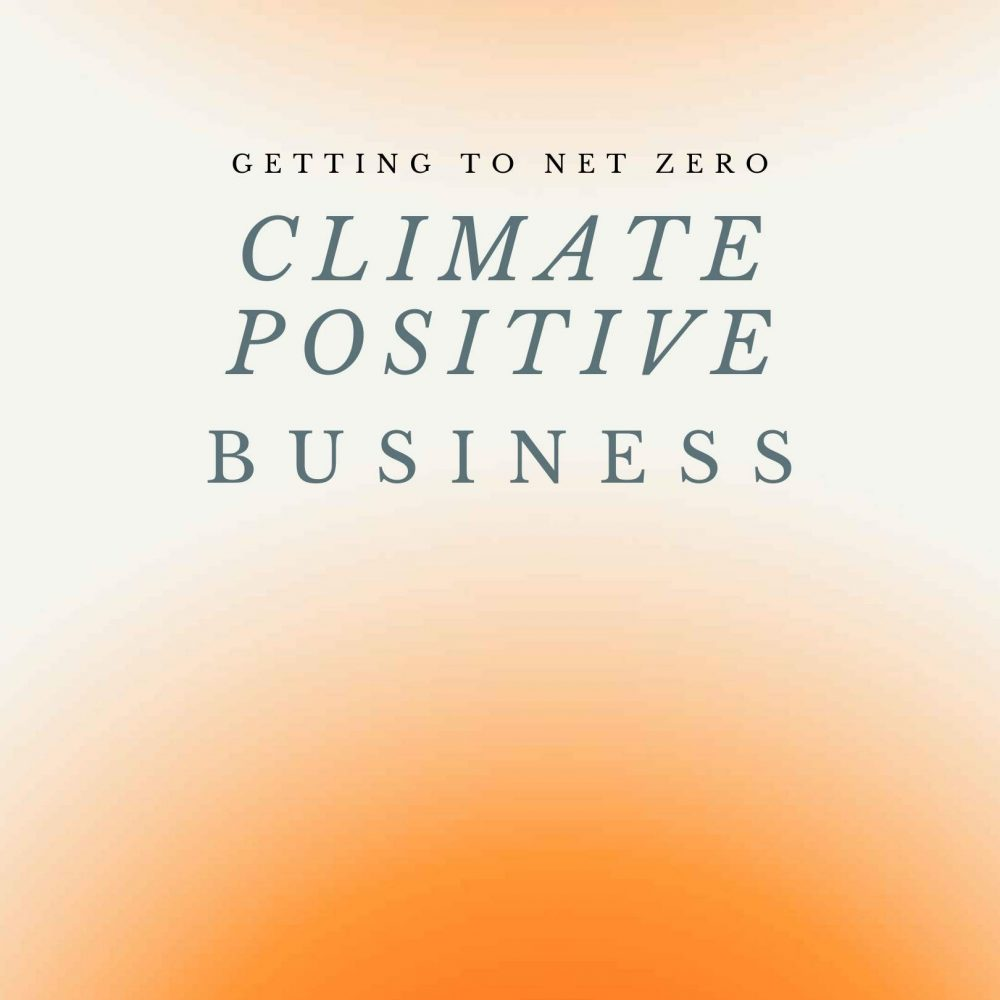 climate-posirtive-business-guide-image