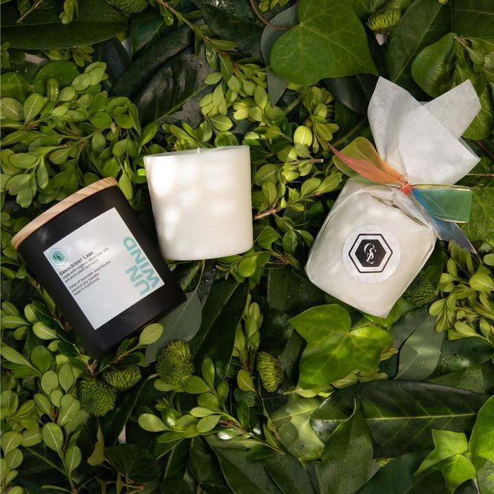 candascent-candles-sustainable-marketplace