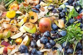 food-waste-scraps-food-innovation-blog
